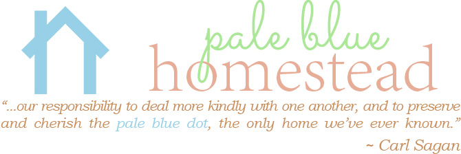 Pale Blue Homestead